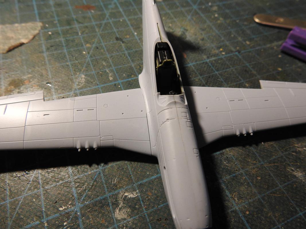 North American F-51D Mustang, Airfix, 1/72 - Sida 2 DSCN5745