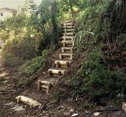 INGEGNERIA NATURALISTICA  5_scalinata_1