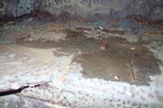 Танк КВ-1 изнутри (№ 9854), Ропша, Ленобласть. P6230054