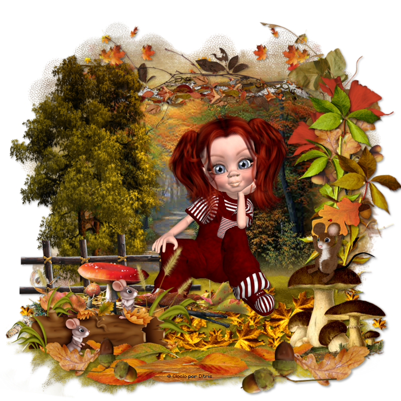 Autumn Colors 889_autumn