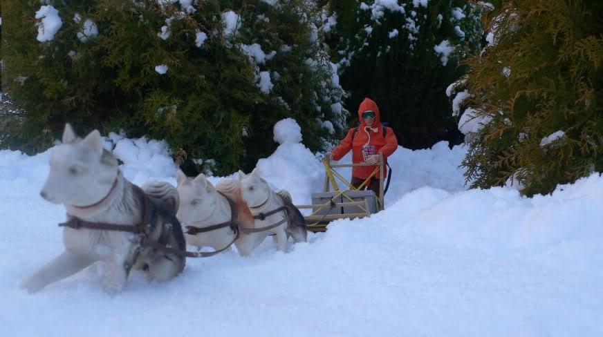 Snow random pictures thread.  4_FB1_F0_A1-_FDB3-4_C1_C-_A29_D-8_A6_E8_E12537_C