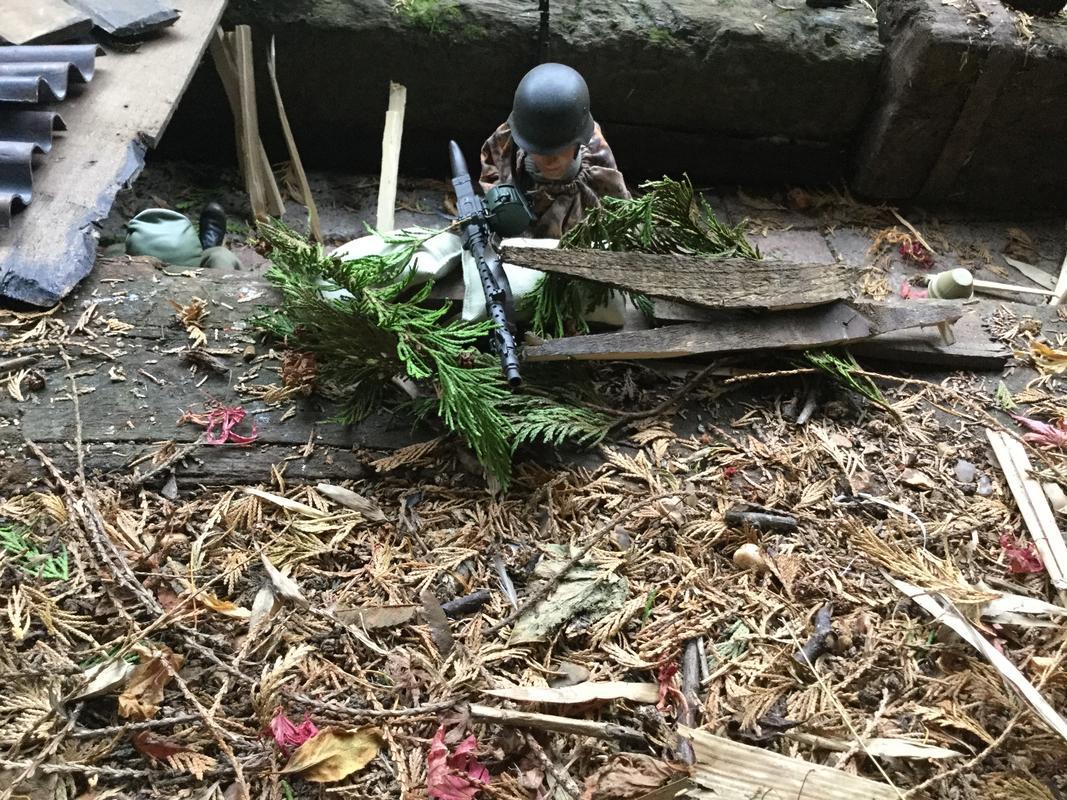 Fix bayonets  IMG_6418