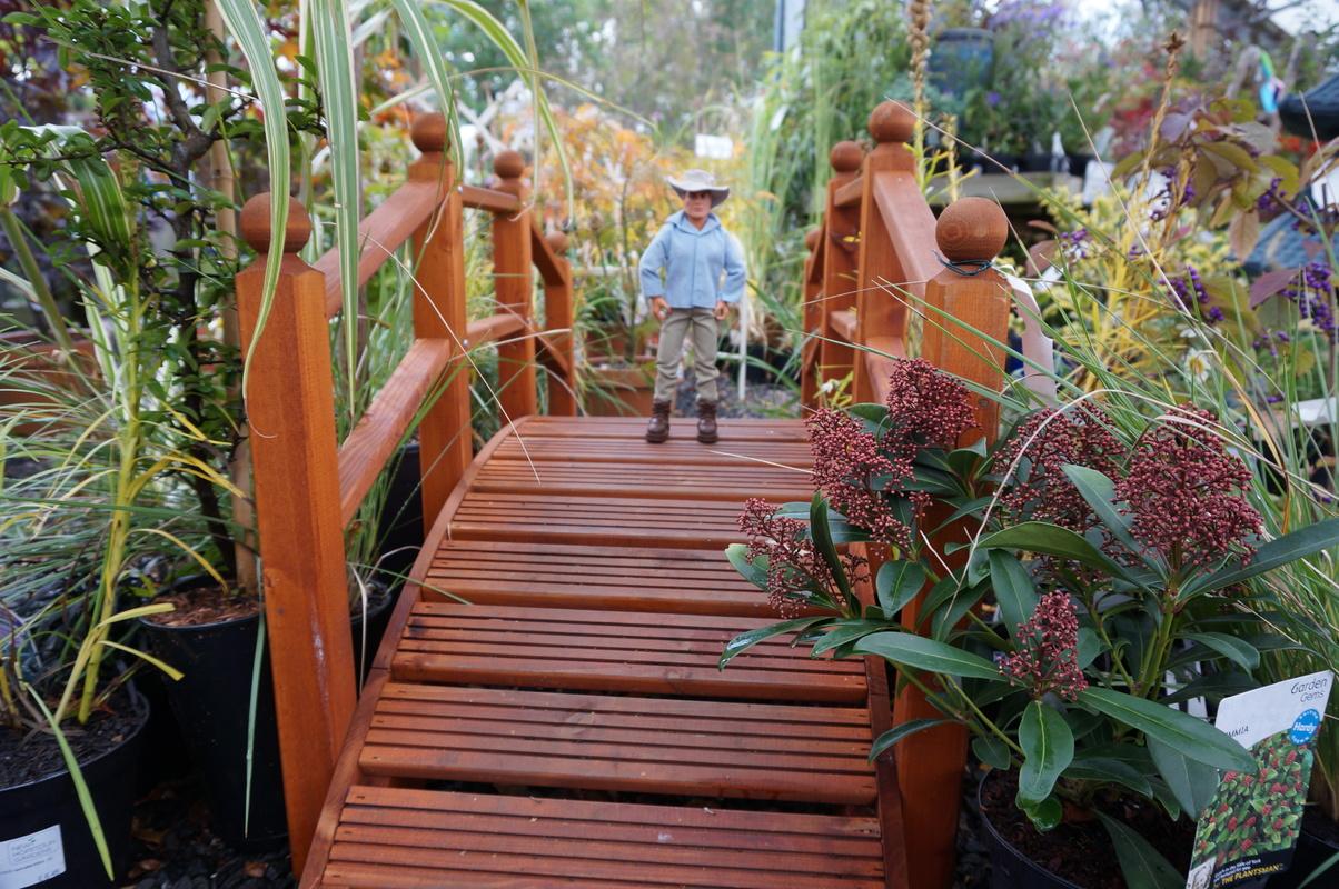 Random Action Man Photos at Hopton garden center. DSC00599