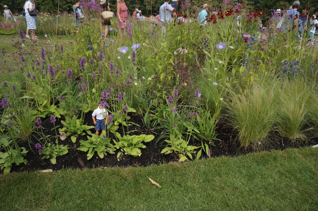 My Mam visiting Hampton Court flower show.  DB53_C2_FC-5_AB7-484_A-_B3_FE-7_D2_AB0893_EC5