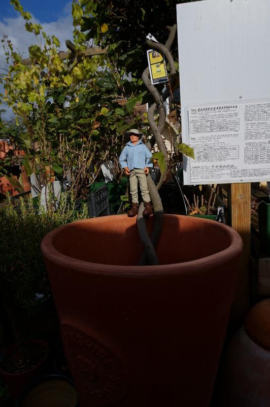 Random Action Man Photos at Hopton garden center. DSC00584