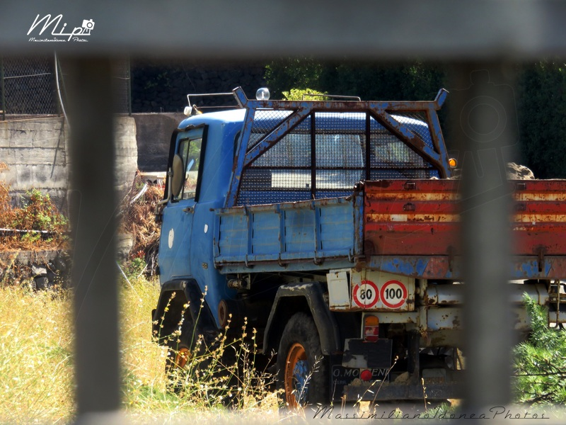 Veicoli commerciali e mezzi pesanti d'epoca o rari circolanti - Pagina 2 Fresia_F90_C_1
