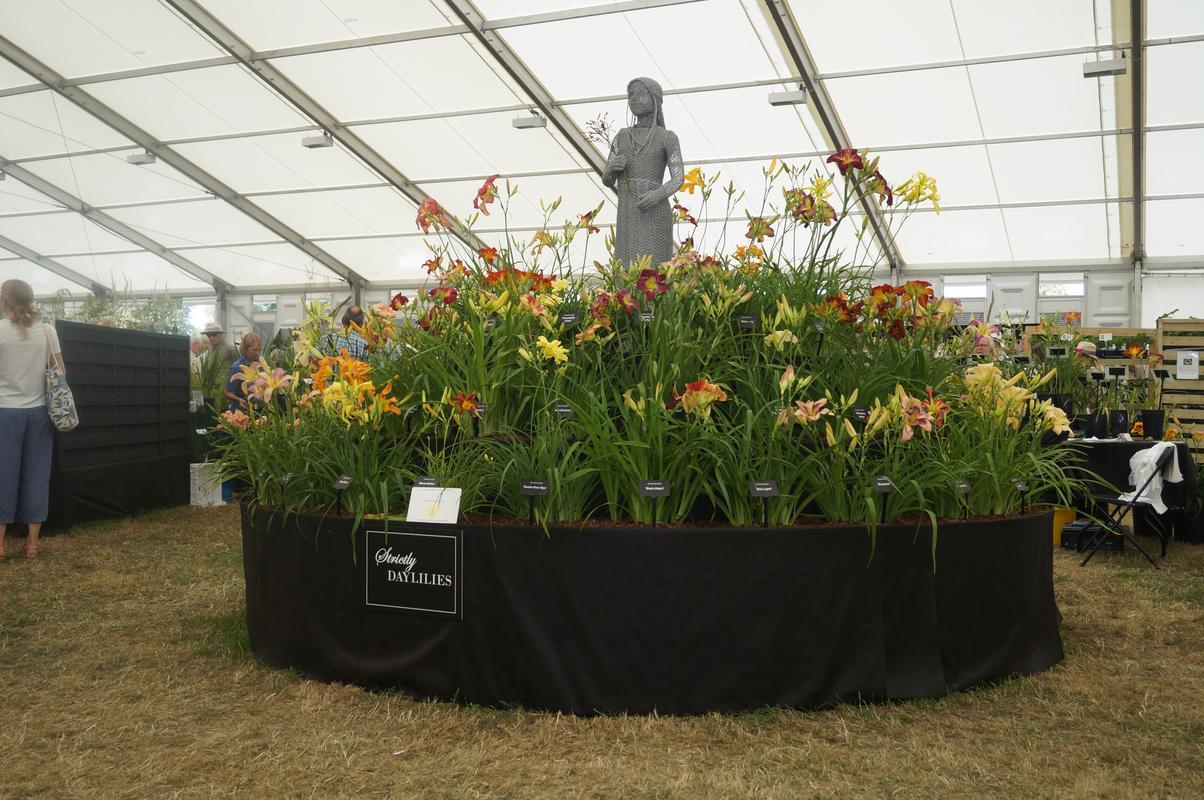 My Mam visiting Hampton Court flower show.  C85_CA177-_F183-43_B2-8_E11-_ACBEC5_AE44_E4