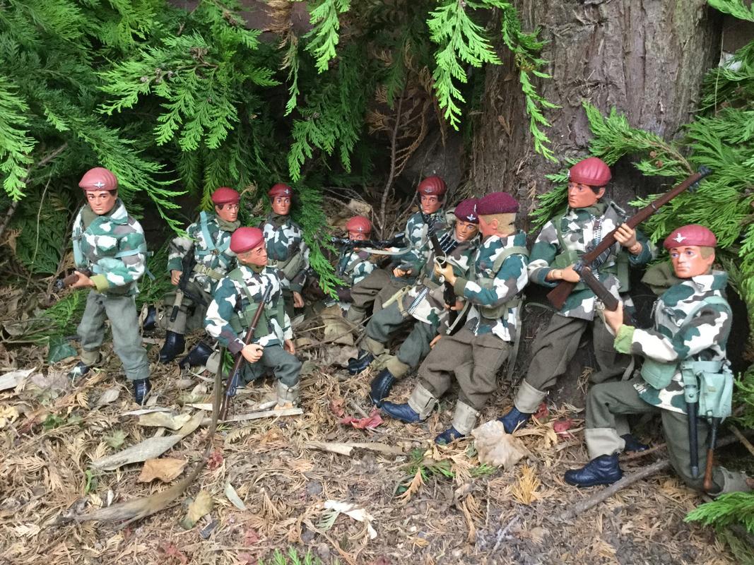 Fix bayonets  IMG_6445