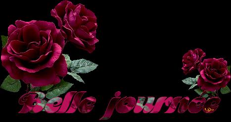 Mots imagés de mon amie Isis, mise à jour : 22/03/2014 - Page 4 Bjrnee_fleurs1_isis2011