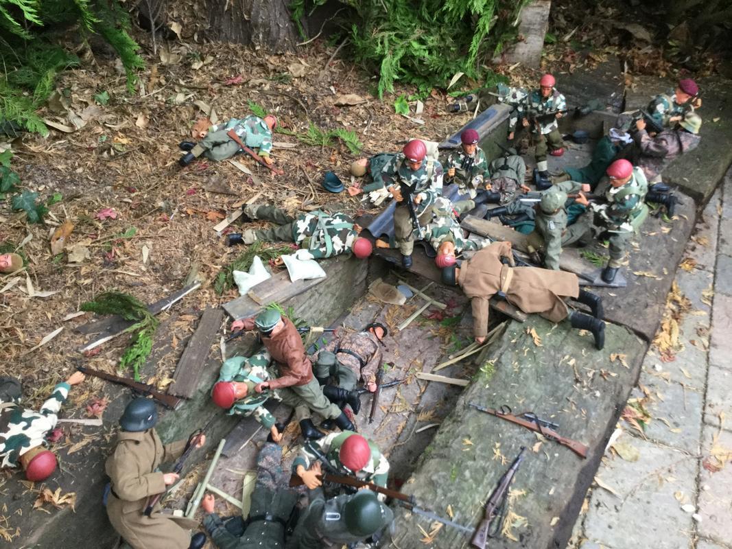 Fix bayonets  IMG_6601