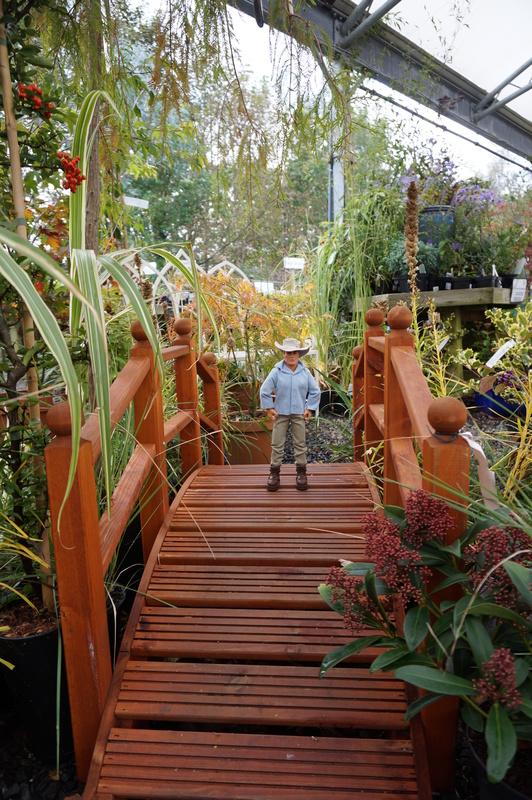 Random Action Man Photos at Hopton garden center. DSC00600