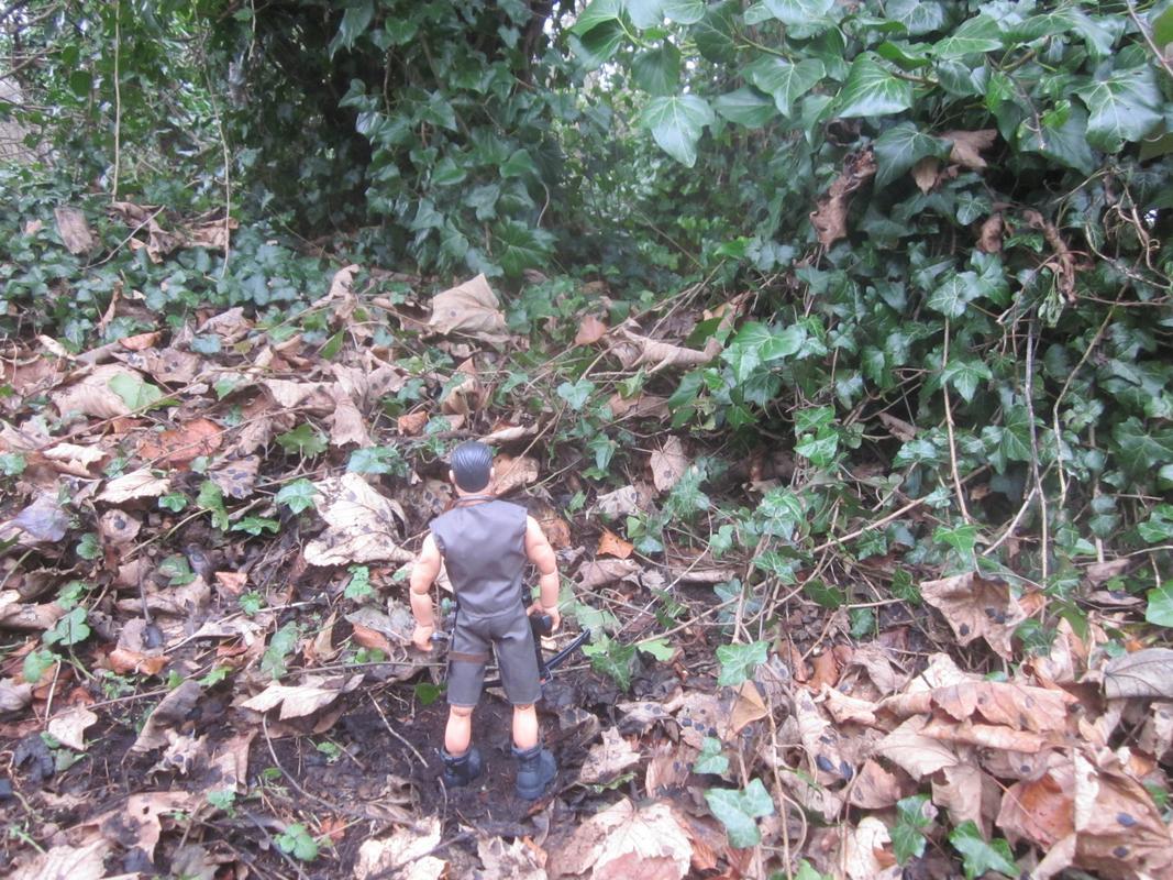 Random Explorer woodland pictures. D4_AC4_A23-_AAF6-473_A-84_E7-28_CCD0_D2049_F