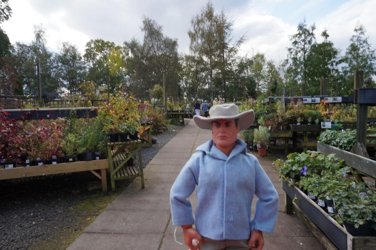 Random Action Man Photos at Hopton garden center. DSC00596