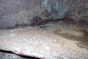 Танк КВ-1 изнутри (№ 9854), Ропша, Ленобласть. P6230053