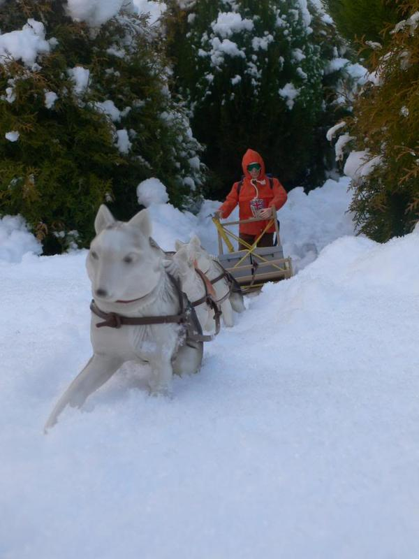 Snow random pictures thread.  DB58_B86_D-277_E-450_D-8_F67-1_DCE3_B326_CAF