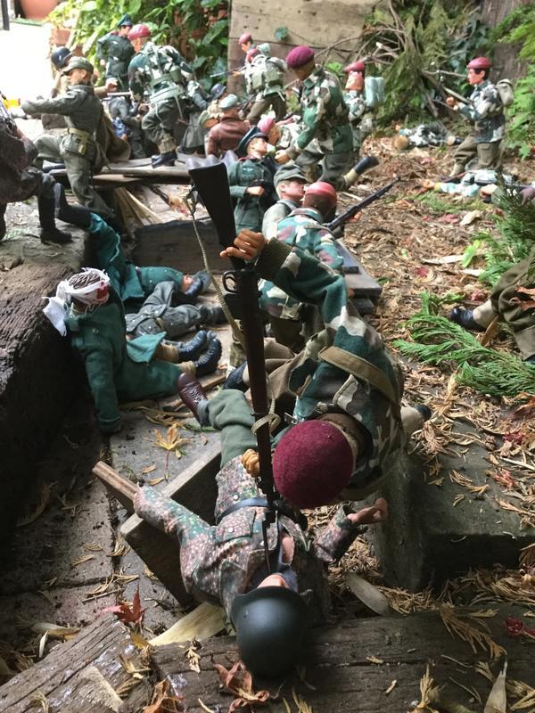 Fix bayonets  IMG_6575