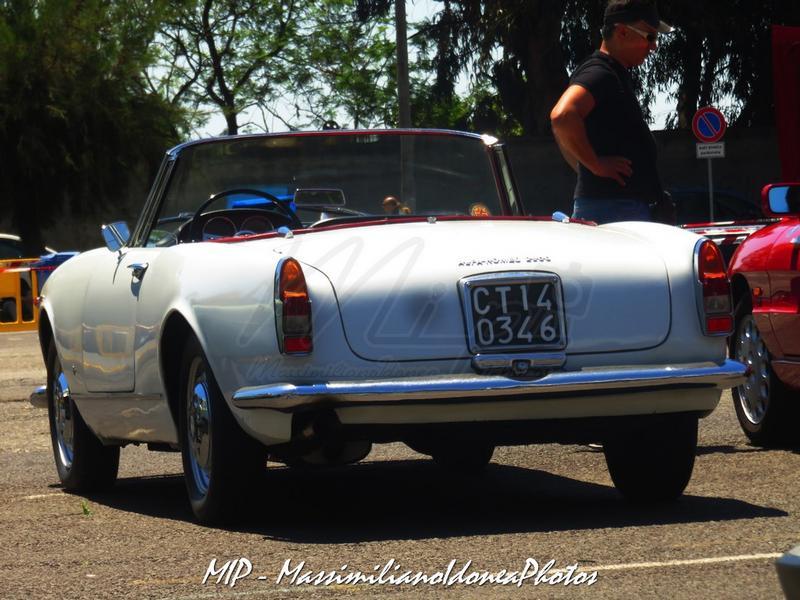 1° Raduno Auto d'Epoca - Gravina e Mascalucia - Pagina 3 Alfa_Romeo_2600_Spider_CT140346_4