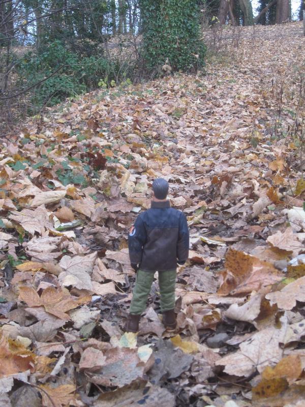My MAM going on a long autumn walk. IMG_5580
