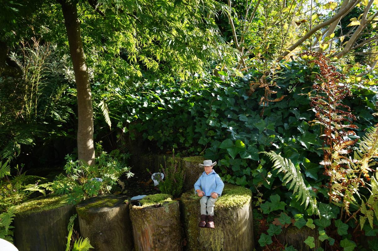 Random Action Man Photos at Hopton garden center. DSC00589