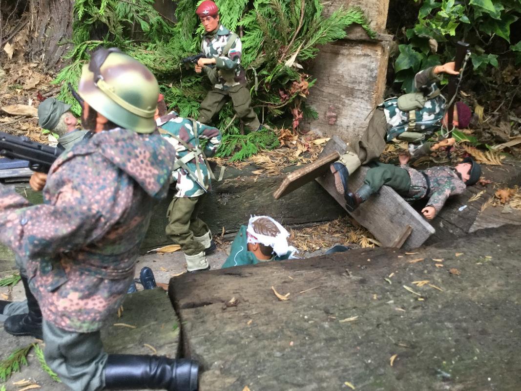 Fix bayonets  IMG_6564