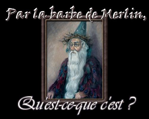 Par la barbe de Merlin, qu'est-ce-que c'est ? Pictunary