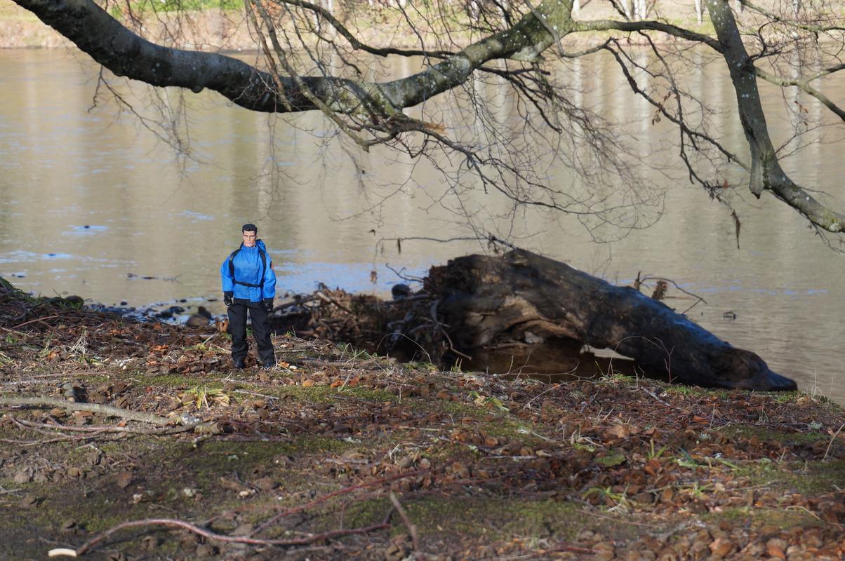 Woodland Dunkeld random pictures.  019020_D5-1479-4_E2_A-8751-4_CDF82_A4374_A