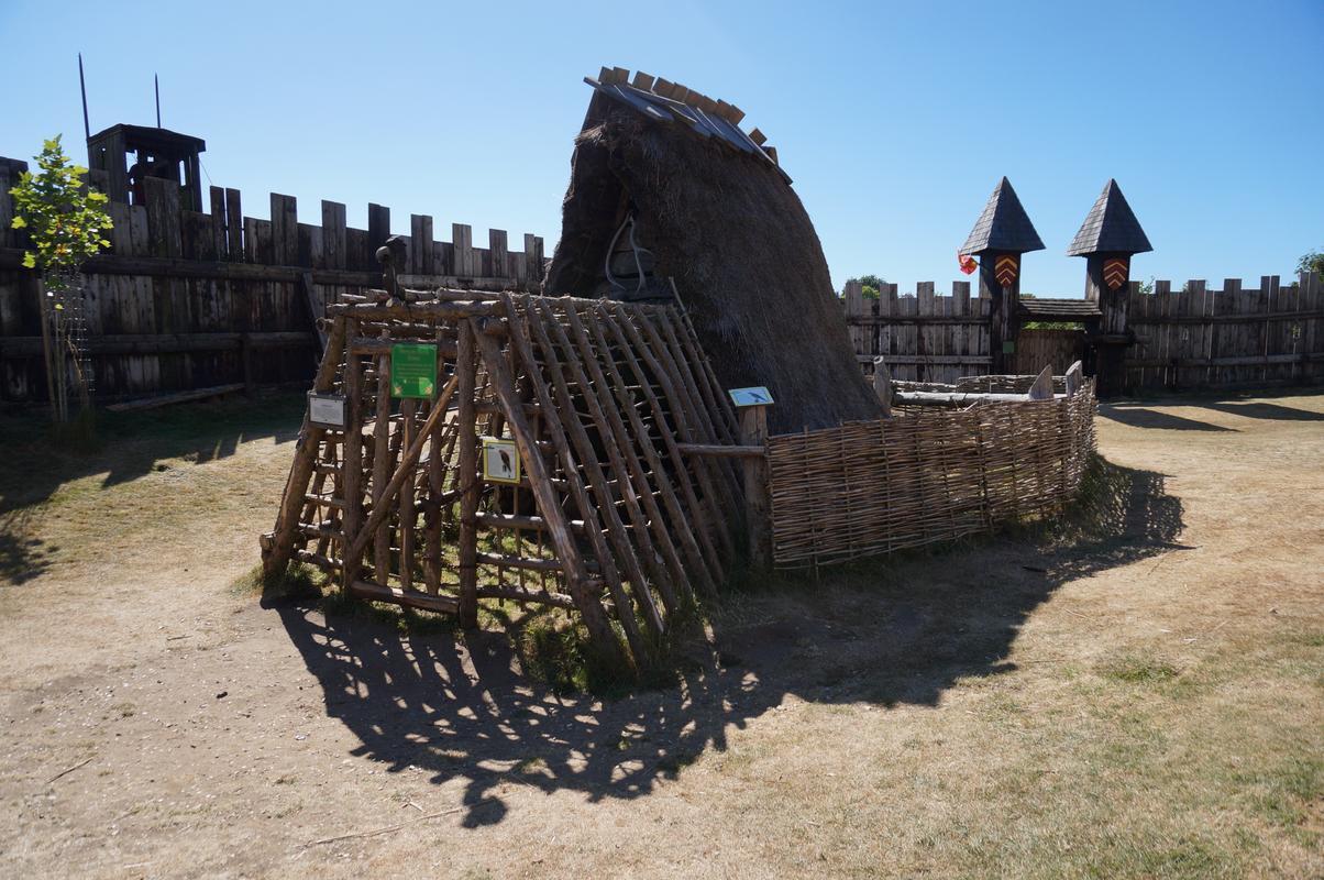 My MAM visiting Mountfitchet Castle. 9_ACB7589-_CA1_C-4_C91-8235-18_E3_FF5213_A0