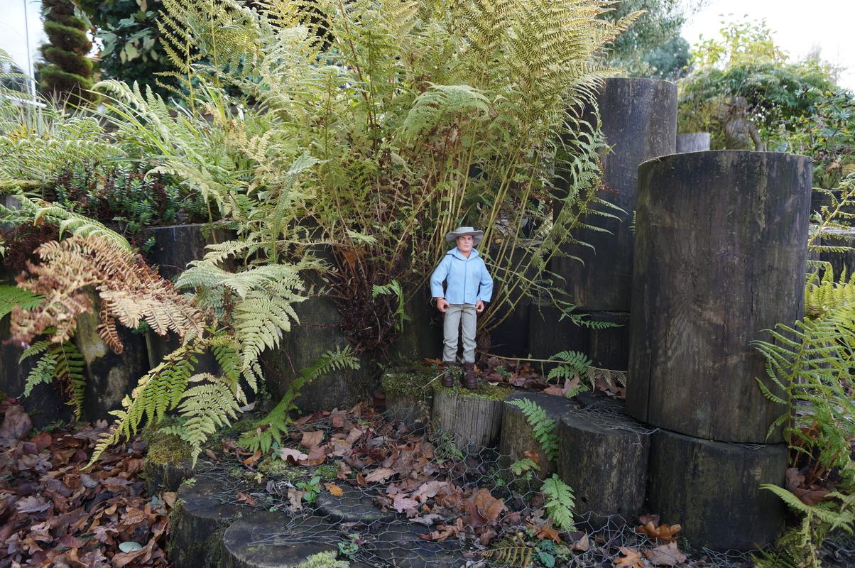 Random Action Man Photos at Hopton garden center. DSC00593