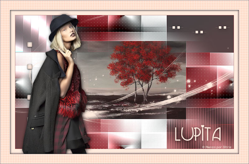 Lupita 904_lupita-alenza