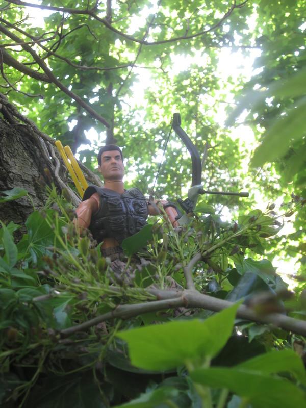 Woodland bowman random woodland photos. IMG_4599