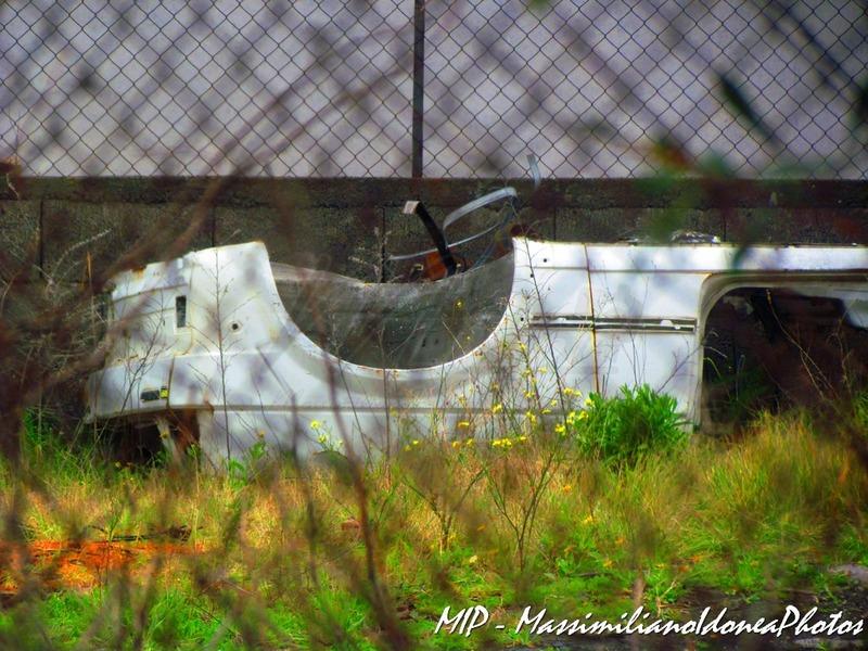 Auto Abbandonate Volkswagen_Golf_1