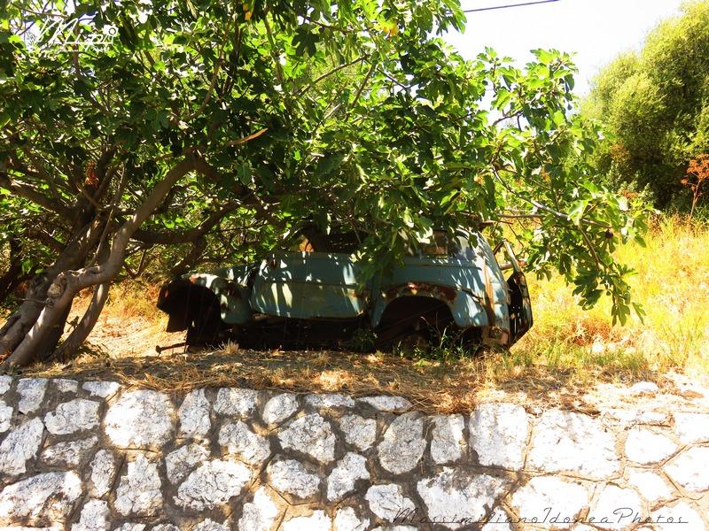 Auto Abbandonate - Pagina 38 Fiat_500_C_Giardinetta_Belvedere_3