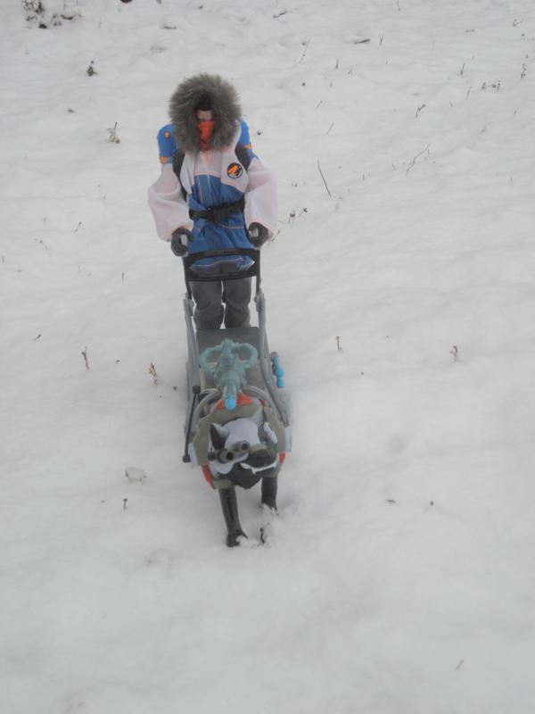 Snow random pictures thread.  - Page 2 8_FF42467-01_CB-4_E71-_AEA8-_BD542_F50_ABF0