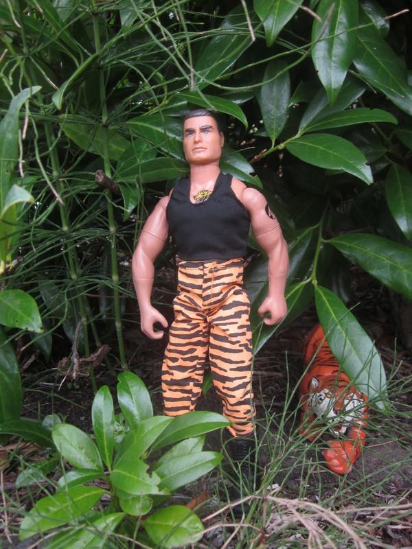 action man tiger strike random photos. IMG_4707