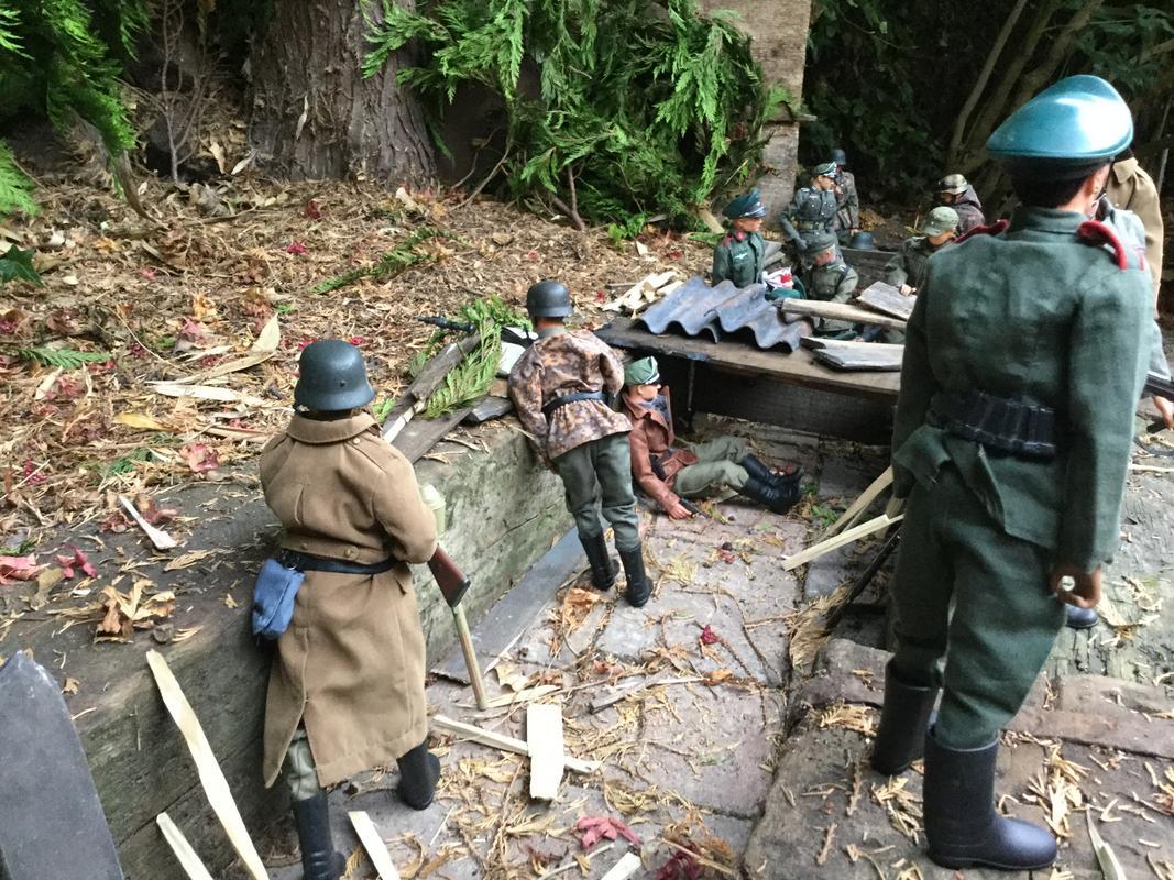 Fix bayonets  IMG_6434