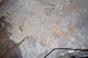 Танк КВ-1 изнутри (№ 9854), Ропша, Ленобласть. P6230328