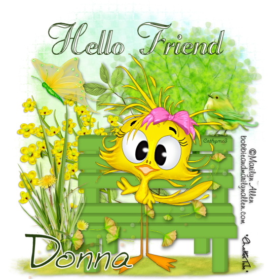 Joanne's Mailbox MA_Hello_Donna