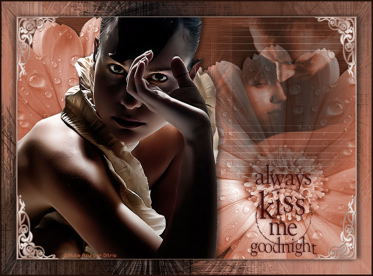 Kiss Me 855