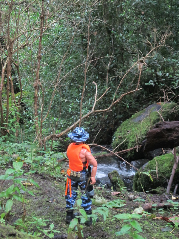 What's your most Most favorite Action Man, Gi Joe or 1/6 Scale photos that you've taken? IMG_1104