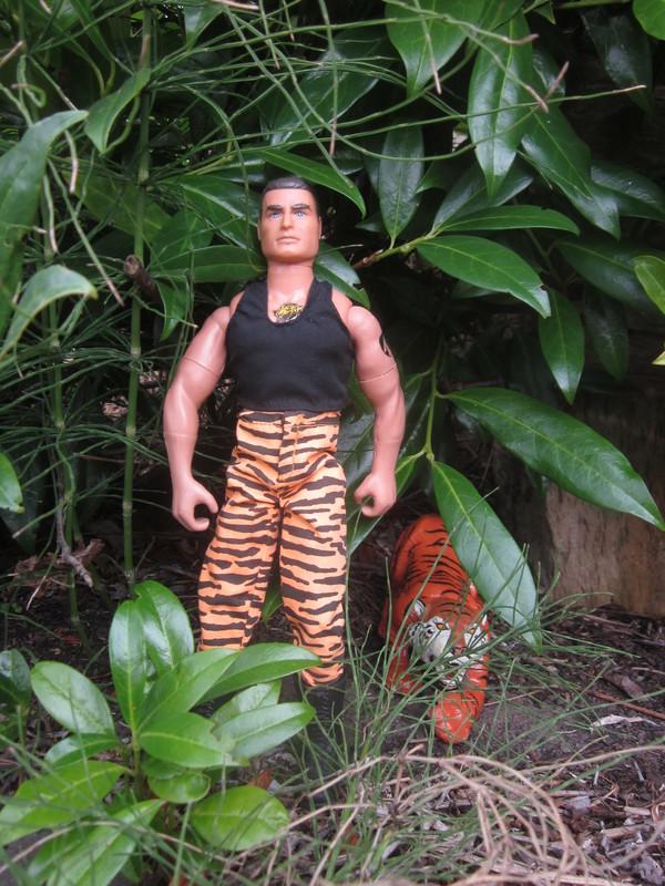 action man tiger strike random photos. IMG_4706
