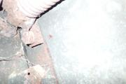 Танк КВ-1 изнутри (№ 9854), Ропша, Ленобласть. P6230154