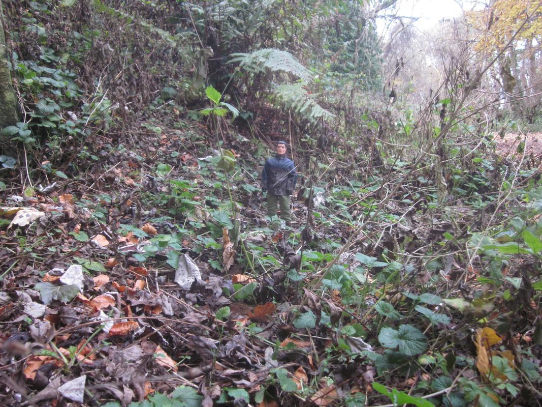 My MAM going on a long autumn walk. IMG_5594