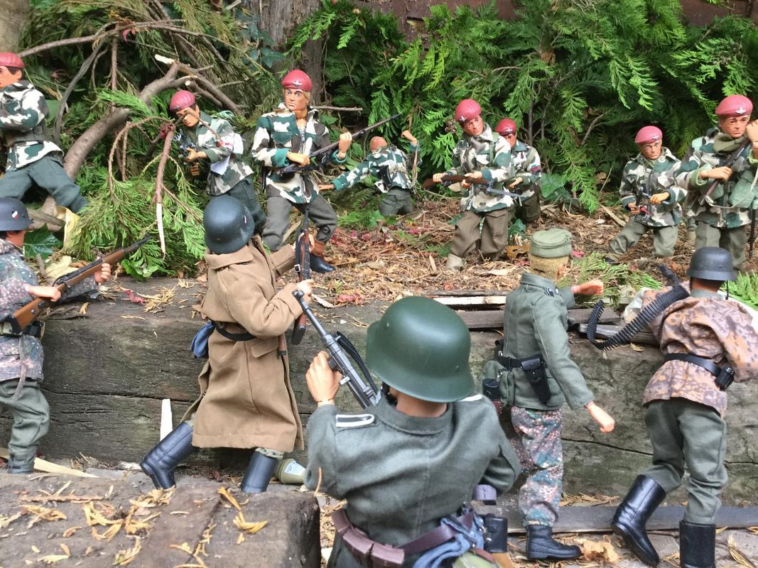 Fix bayonets  IMG_6520