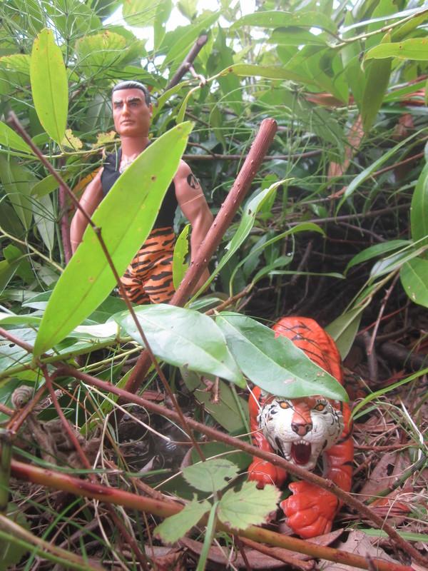 action man tiger strike random photos. IMG_4704
