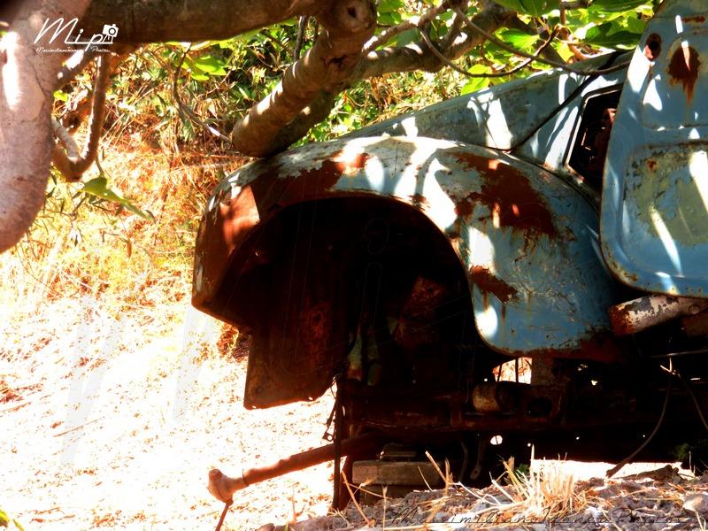 Auto Abbandonate - Pagina 38 Fiat_500_C_Giardinetta_Belvedere_4