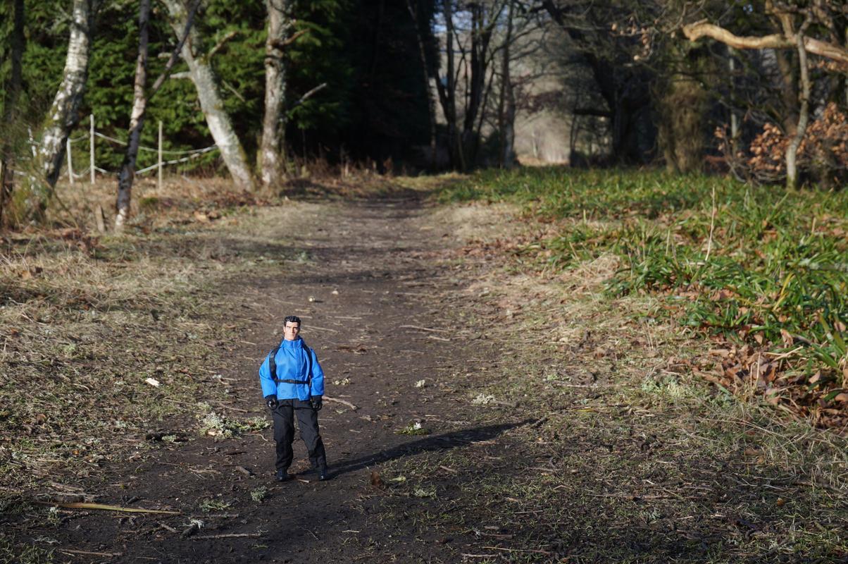 Woodland Dunkeld random pictures.  FE1_F621_D-_B7_EA-4897-9_E03-784_B31_F1_AA82