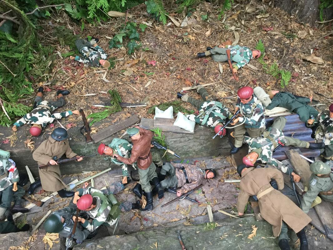 Fix bayonets  IMG_6605