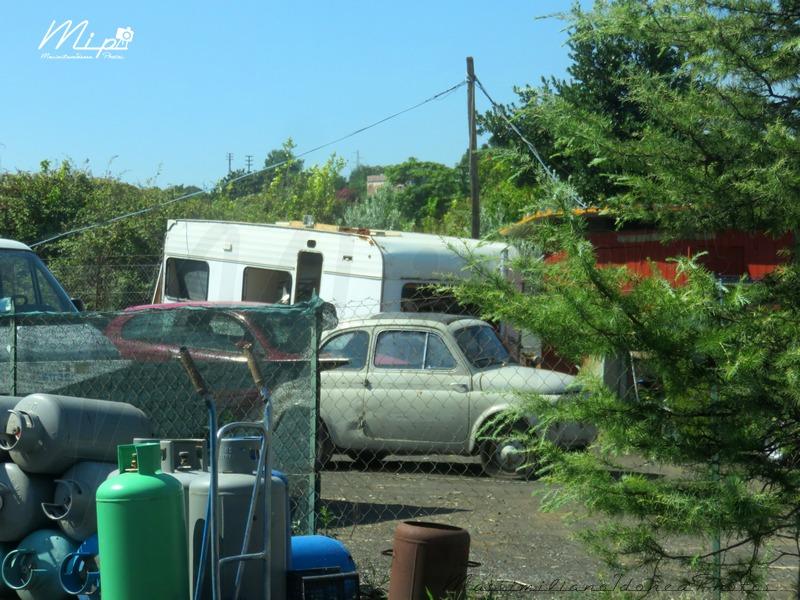 avvistamenti auto storiche Fiat_500_D