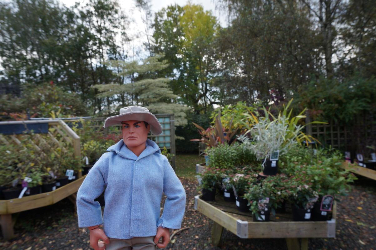 Random Action Man Photos at Hopton garden center. DSC00598