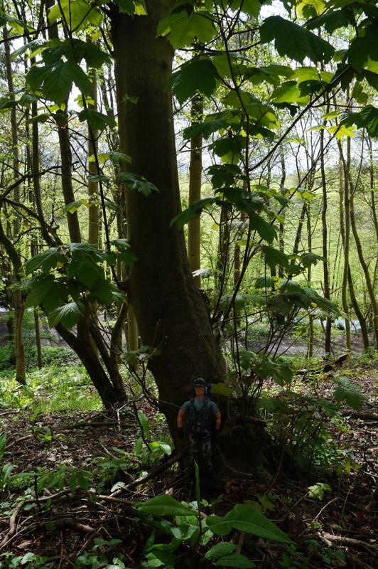 My Action Man Mortar Combat Mission Raid Random Woodland Photos DSC00689